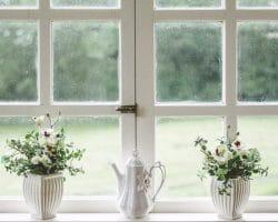 Augmenter la luminosité grâce à de nouvelles fenêtres